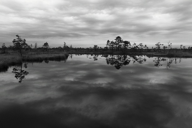 Water Reflection Photography Black And White black and white...
