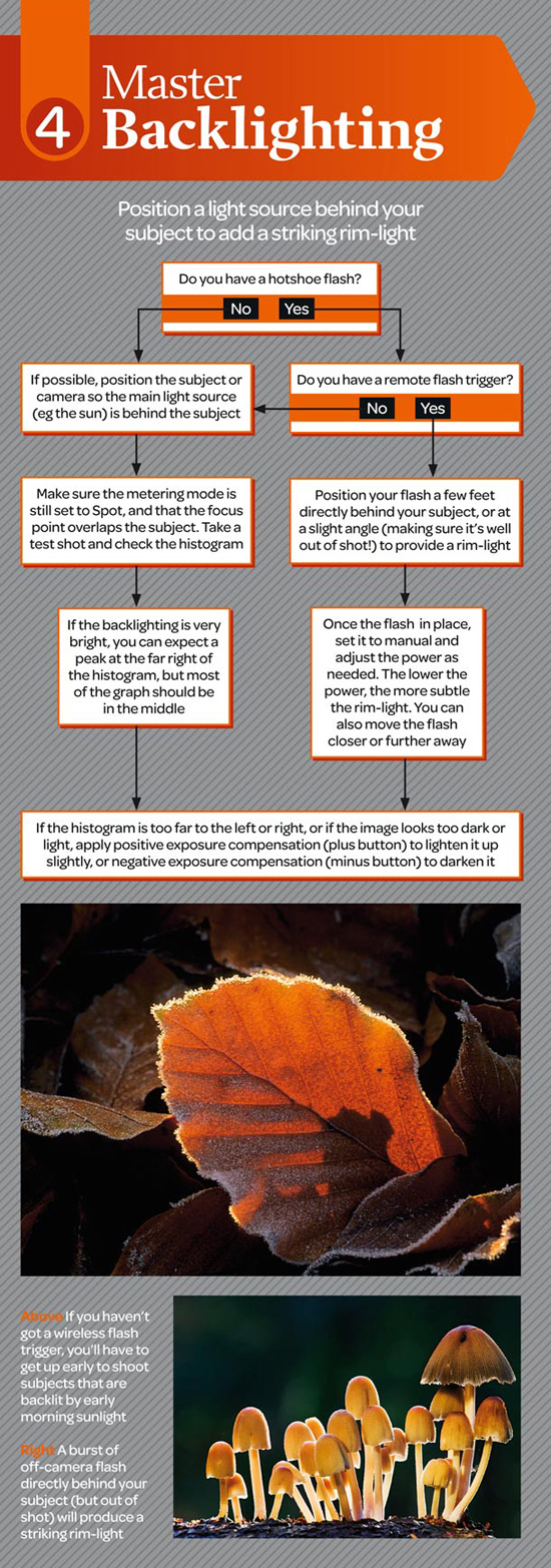 macro photography cheatsheet