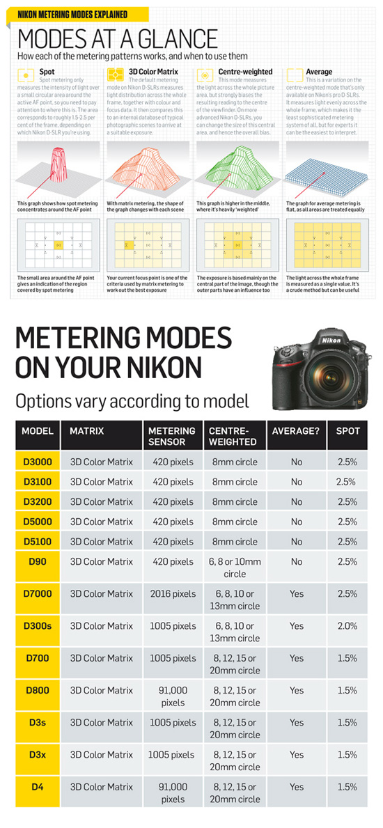 nikon d3100 manual for dummies